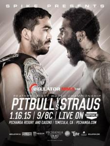Bellator_132_Pitbull_vs__Straus_2_Poster